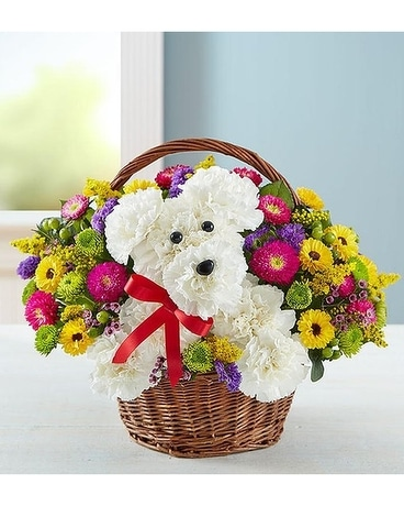 a-DOG-able in a Basket Basket Arrangement