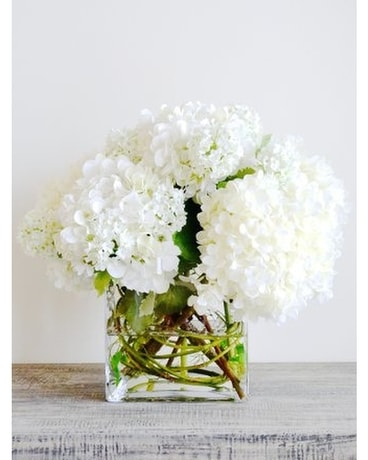 Hydrangea Cube Flower Arrangement