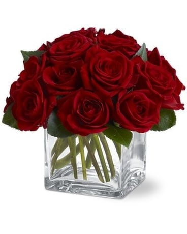 Dozen Red Rose Cube Flower Arrangement