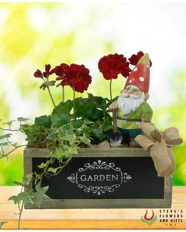Love You Gnome Matter What Dish Garden Dish Garden Plant