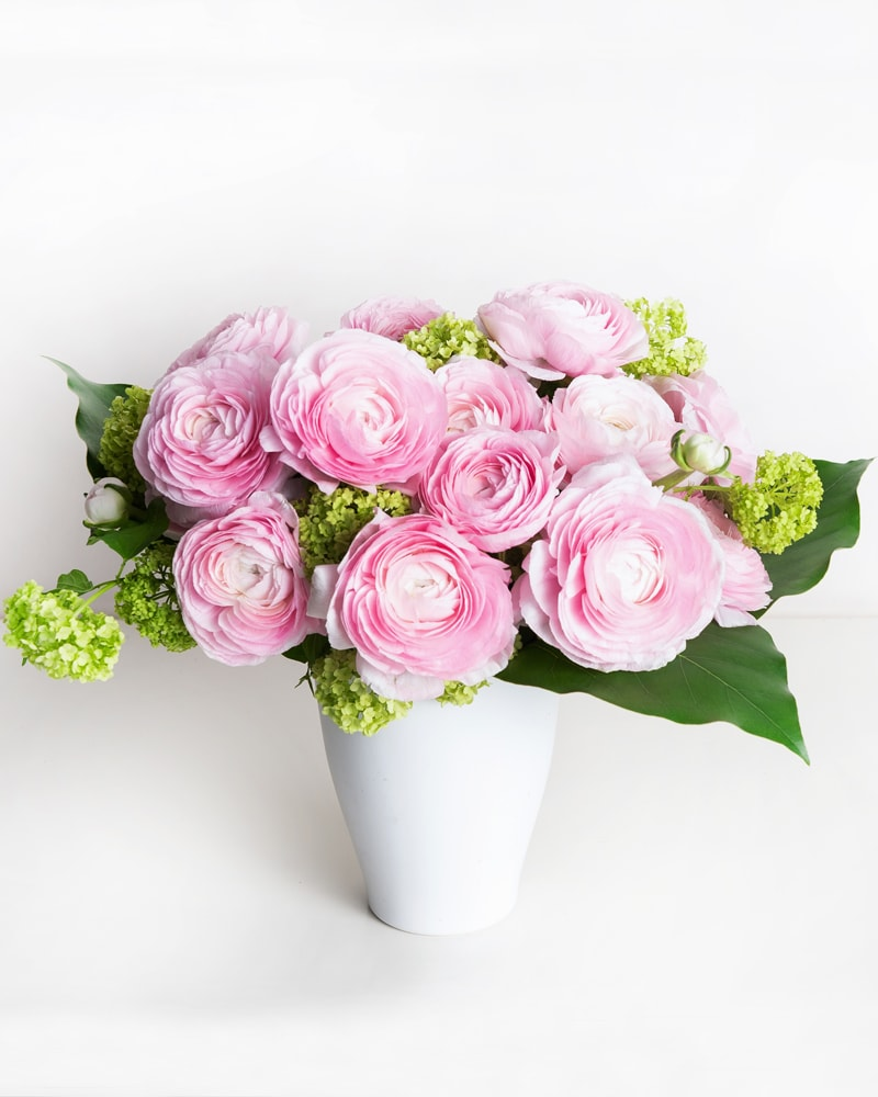 Boston New York Florist Same Day Flower Delivery