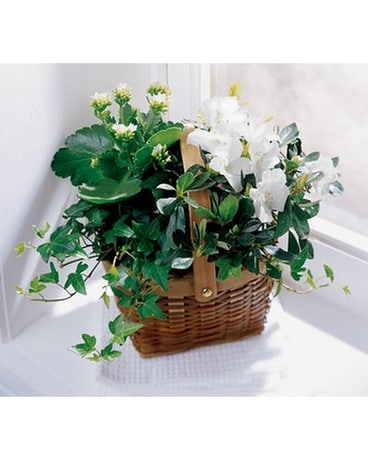 The FTD® White Assortment Basket Flower Arrangement