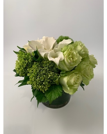 City Chic White & Green Flower Arrangement