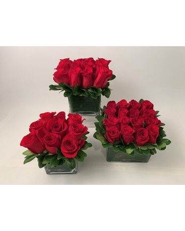 Rose Square - Red Flower Arrangement