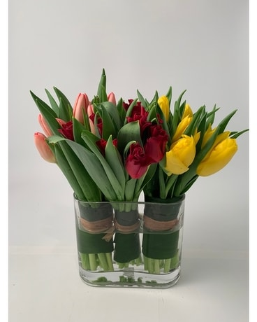 Tulip Bouquets - Flower Arrangement