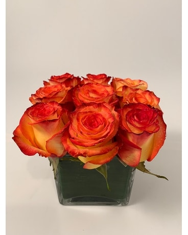 Rose Square - Orange Flower Arrangement