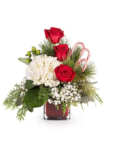 Candy Cane Celebration Flower Arrangement