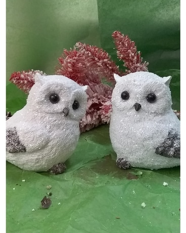 White Christmas Owls Gifts