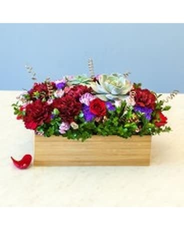 Fresh Flowers & Succulents Flower Arrangement