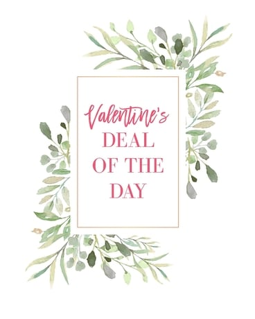 Valentine's Deal of the Day Flower Arrangement