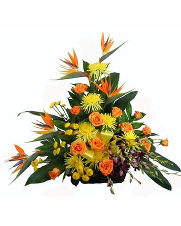 Tropical Paradise Birds of Paradise Rustic Basket Funeral Arrangement