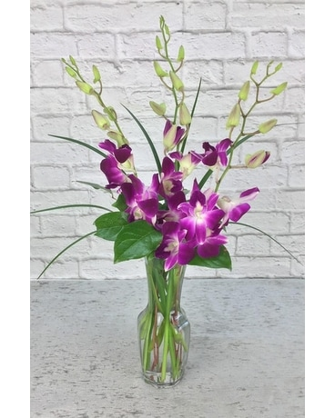 Orchids Delight Flower Arrangement