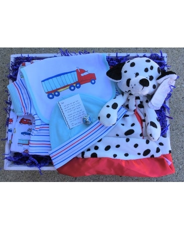 Baby Boy Bundle Gifts