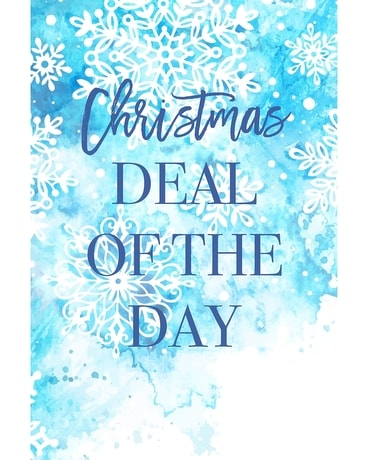 Christmas Deal of the Day Flower Arrangement