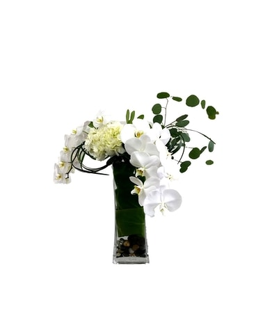 Phalaenopsis Orchid Arrangement Flower Arrangement