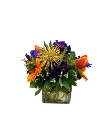 Protea & Gerber Daisy Arrangement Flower Arrangement