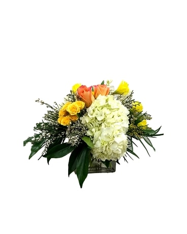 Vibrant Hydrangea & Rose Arrangement Flower Arrangement