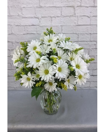 Daisy Chain Flower Arrangement