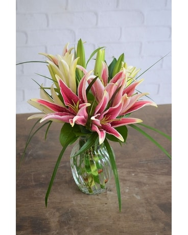 Stargazer Daydreams Flower Arrangement