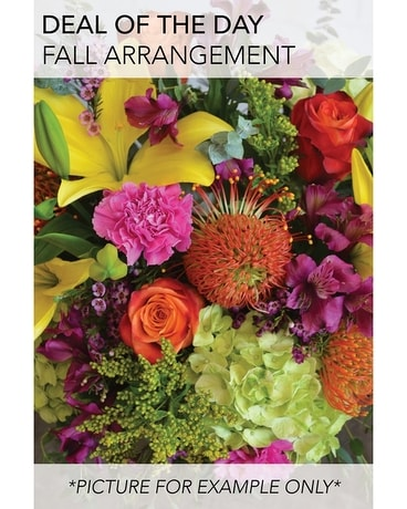 Fall Deal of the Day Flower Arrangement