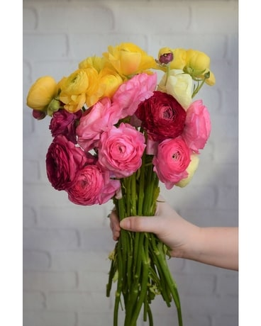 Assorted Ranunculus Flower Arrangement