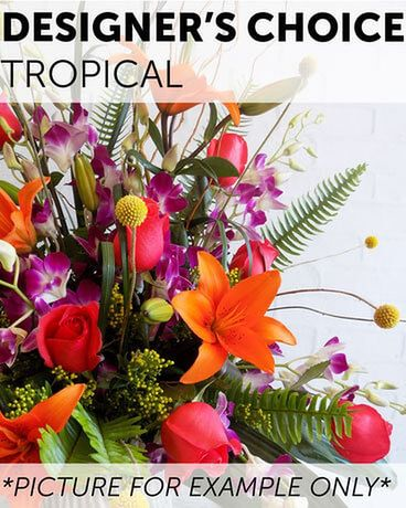 Designer's Choice - Tropical Flower Arrangement