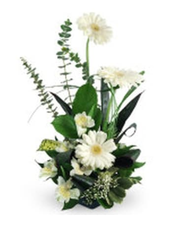 Simple and Sophiscated Flower Arrangement