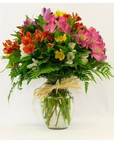 Alstromeria in Bloom Flower Arrangement