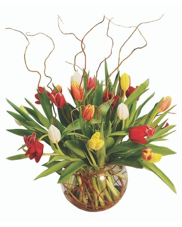 Tulip Delight Flower Arrangement