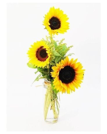 Sassy Sunflowers Flower Arrangement