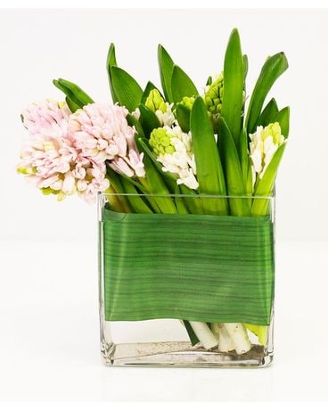 Fragrant Hyacinth Flower Arrangement