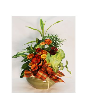 Dish Garden Fall Flower Arrangement