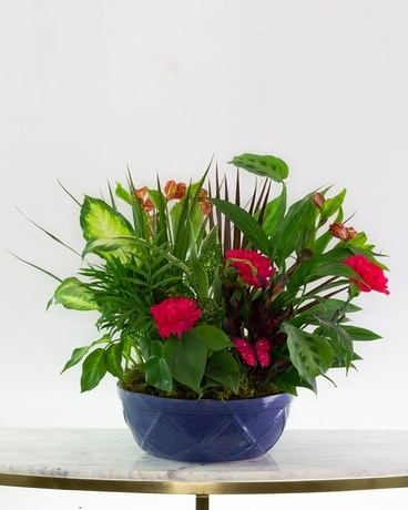 Green Dish Garden with Fresh Cut Flowers Flower Arrangement
