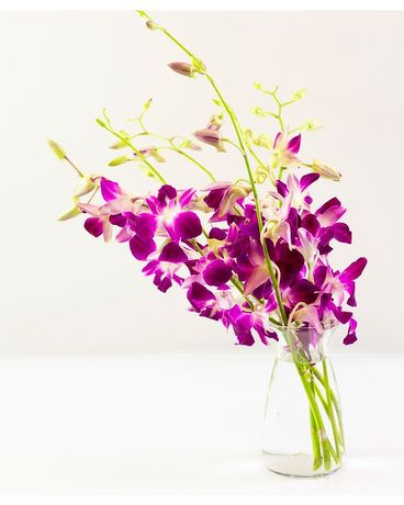 Purple Orchid Delight in Bloom Flower Arrangement