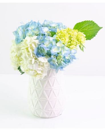 Classic Hydrangeas Flower Arrangement