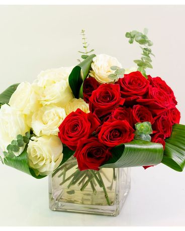 Modern Red & White Rose Cube Flower Arrangement
