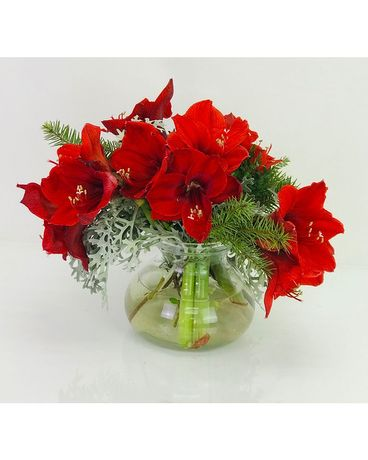 Winter Amaryllis Vase Flower Arrangement