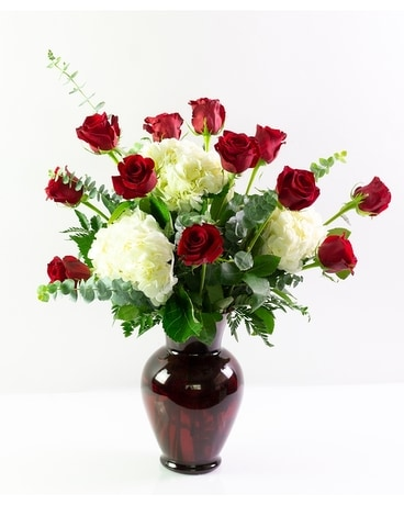 One Dozen Roses with Hydrangea Flower Arrangement