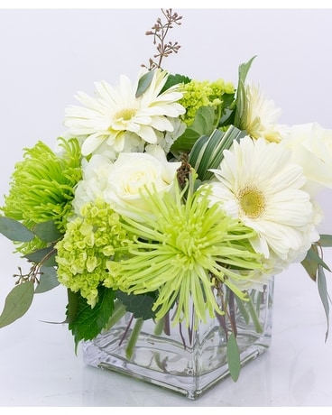 Bright Spring Green & White