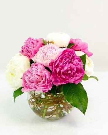 Peony Bubble Bowl Flower Arrangement