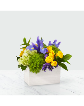 FTD Fields of Iris Bouquet Flower Arrangement