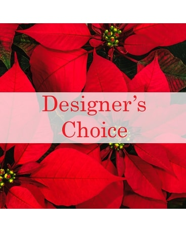Designer's Choice Fresh Winter/Holiday Arrangement