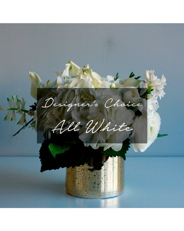 Designer's Choice All White