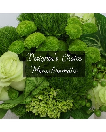 Designer's Choice Monochromatic