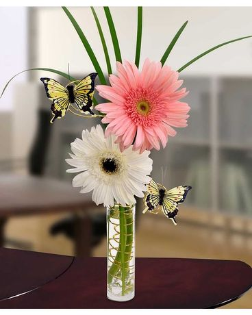 Gerber Daisy Delight Flower Arrangement