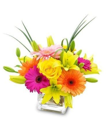 Bright & Cheery Flower Arrangement