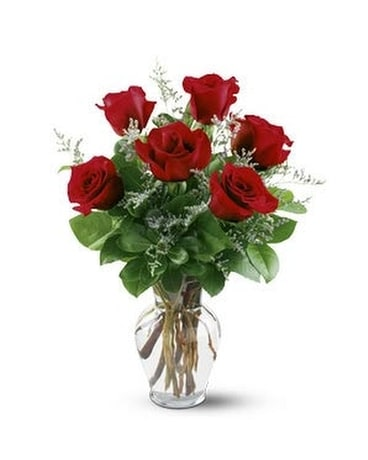 Half Dozen Roses Flower Arrangement