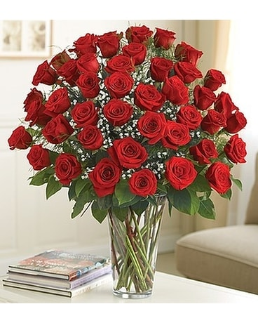 Breathtaking Beauty - 4 Dozen Roses Flower Arrangement