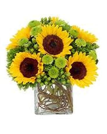 Sunflower Suprise Flower Arrangement