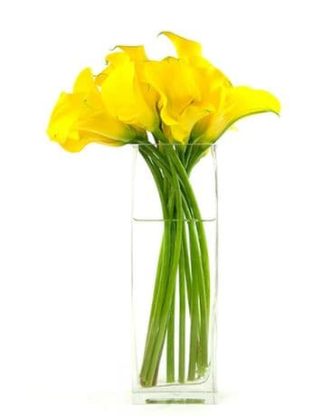 Yellow Siamens Callas Flower Arrangement